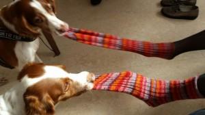 Socken an und ausziehen