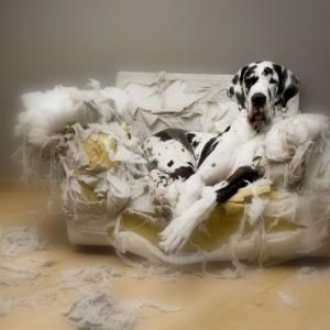 Bleib daheim auf dem Sofa